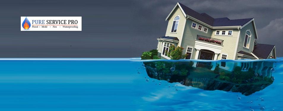 Wayne Basement Waterproofing Company