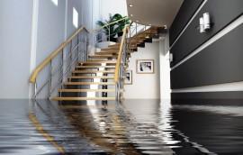West Orange Flood Damage Cleanup