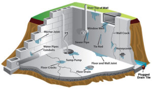 Basement Waterproofing Company